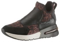 Ash-Boots