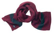 Streifen-Schal